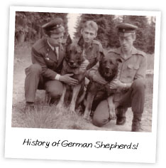 History of German Shepherds